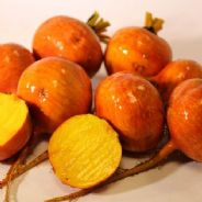 Beetroot Boldor F1 - Improved Golden variety - Seeds 100 Seeds - 300 seeds